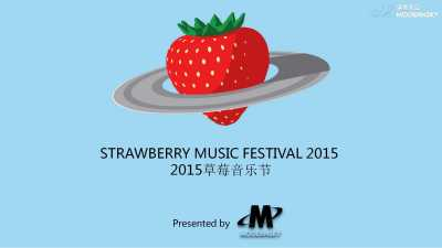 大型娱乐活动草莓音乐节企划策划方案