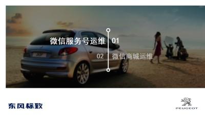 汽车品牌东风标致移动营销与运营策划方案