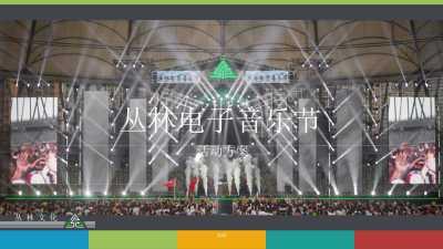 大型娱乐活动丛林电音节活动策划方案[49P]