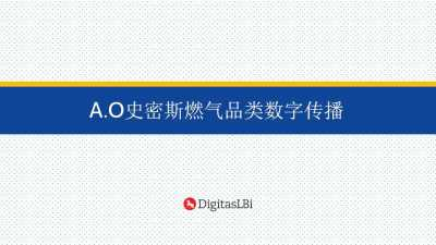 家电品牌A.O史密斯燃气品类数字传播线上传播策划方案【24P】