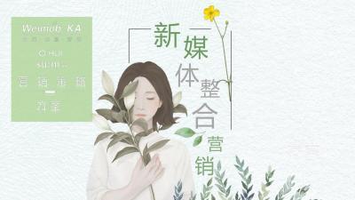 韩妆美妆-LG旗下护肤品牌新媒体整合营销方案51p