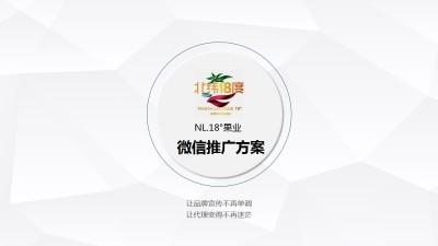 果业品牌北纬十八度果业微信推广策划方案【18P】
