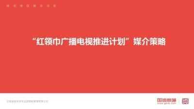 新媒体还行业红领巾广播电视推进计划媒介策略方案【32P】
