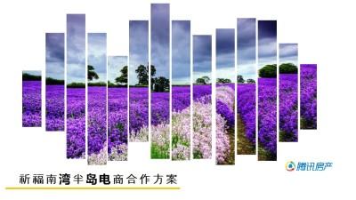 房地产品牌祈福南湾与腾讯房产电商合作营销策划方案【15P】