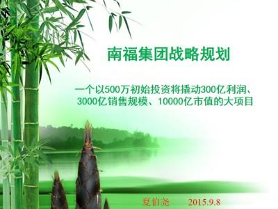 家居装饰品牌南福集团竹炭板项目战略规划推广方案【59P】