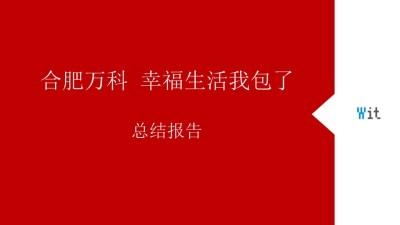 """房地产品牌合肥万科""""幸福生活我包了""""推广总结策划方案【58P】"""