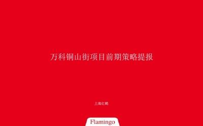 房地产品牌万科铜山街项目前期提案终稿推广方案【421P】