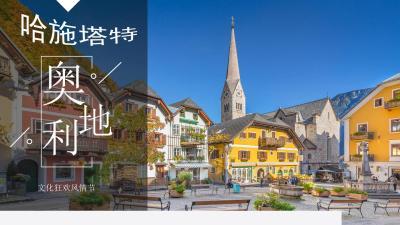 2021地产项目营销中心开放(奥地利文化狂欢节主题)活动策划方案-51P