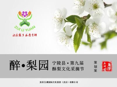 宁陵县第九届酥梨文化采摘节活动策划方案【17P】