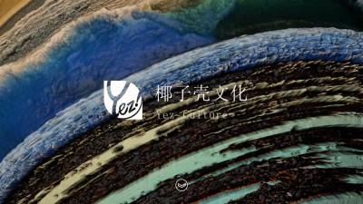 精准化电商营销服务平台椰子壳文化公司介绍推广方案【49P】