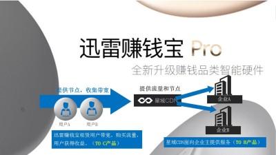 互联网科技迅雷赚钱宝PRO移动端投放推广方案【48P】