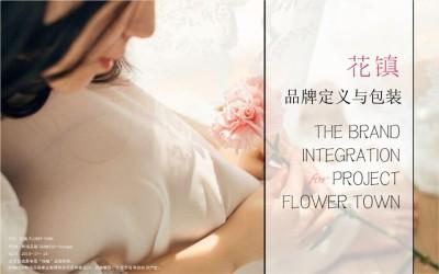 互联网女性情感服务平台花镇品牌定位推广方案【67P】