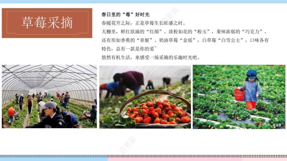 2021地产项目春季农场采摘体验季(向往的生活主题)活动策划方案-37P