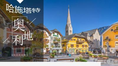 2021房地产营销中心开放文化节活动策划方案51P