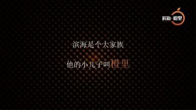 房地产品牌滨海橙里感恩答谢宴活动策划方案【41P】