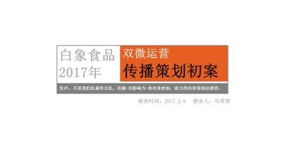 方便面品牌白象食品双微运营新媒体营销策划方案【45P】