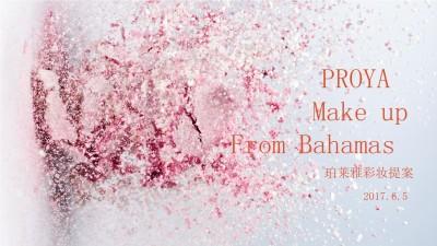 化妆品品牌珀莱雅PROYA彩妆品牌提案策划方案【129P】