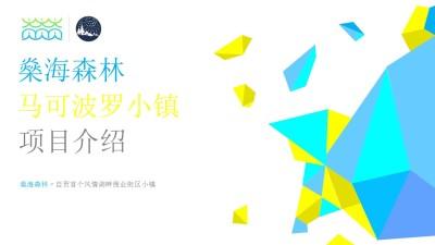 商业地产品牌燊海森林马可波罗小镇商业项目推广方案【53P】