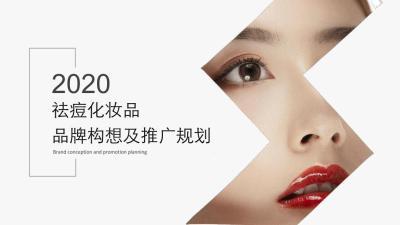 2020日化化妆品祛痘化品牌推广全案110P