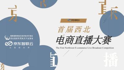 2020电商行业京东电商直播大赛策划全案-132P