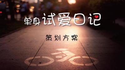 影视网络网络剧《单身试爱日记》项目策划方案[50P]