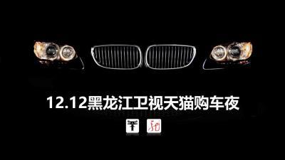 汽车品牌黑龙江卫视天猫购车夜项目招商活动策划方案【23P】